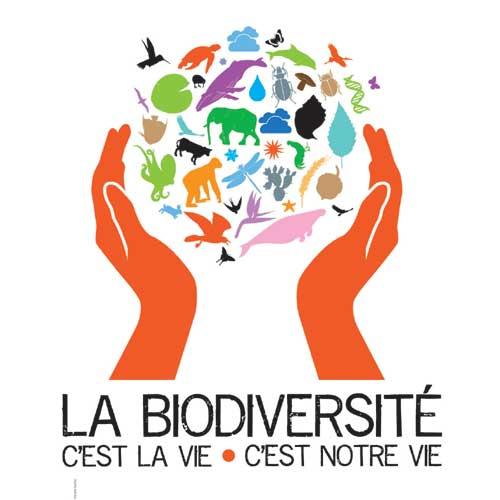Expo_biodiversite_web_01.jpg